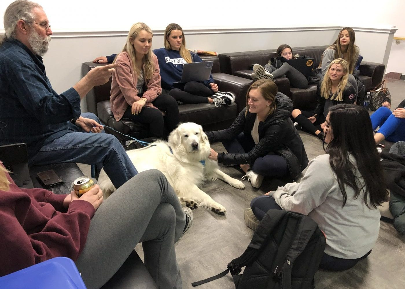 Bear, our therapy dog, guides us through another CCPA Comm Team meeting